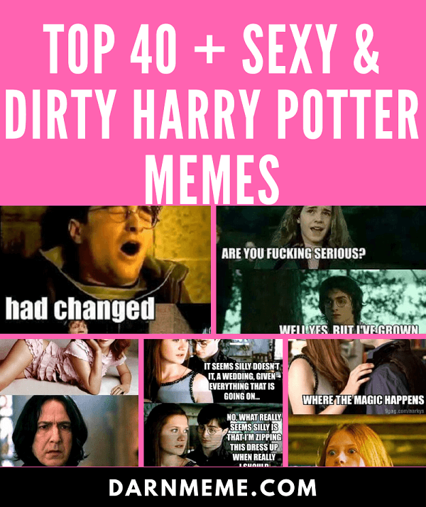 Top 40 Dirty Harry Potter Memes of 2018