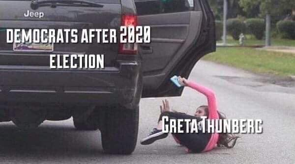 Greta Thunberg Meme - Thrown out of car after the 2020 election
