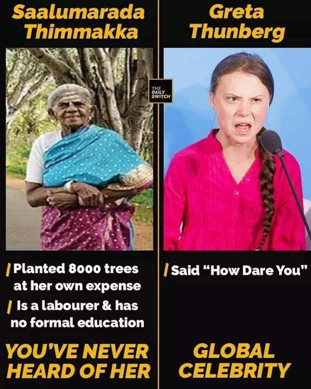 Greta Thunberg meme - Compared to real activists that made a difference